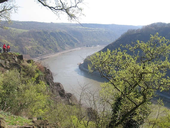 Rhine River from Loreley